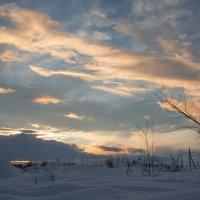 Зимний закат :: юрий Амосов