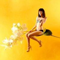 flowers :: Karina Kurs (RinaKa)