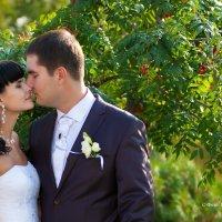 Свадебное :: Валерий Гущин