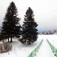 Усть-Вымь. Зима. Мост через Марьин ручей. :: Николай Туркин