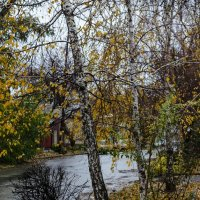 Поздняя осень :: Константин Бобинский