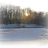 И зима рассказывает сказки, засыпая медленно сама..... :: Tatiana Markova