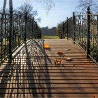 По мостику с Осенью :: Алла Allasa