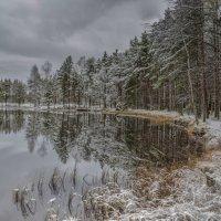 Пасмурное озеро :: Valeriy Piterskiy