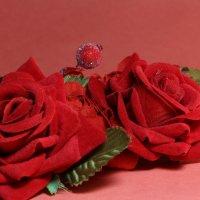 Цветы :: Елена Набоких