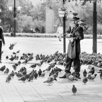 Друг голубей в городе Чита. :: Ирина Токарева