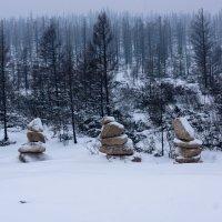 Каменные фигуры :: Роман Синельников
