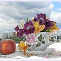 Доброе утро! :: Татьяна