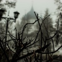туман :: Александра Кондакс