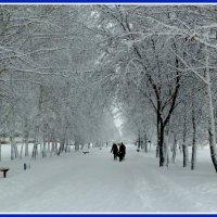 Снегопад. :: Прима Игорь Кондратьевич