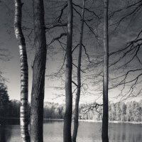 Озеро :: Oswaldo Kr.