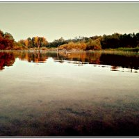 река Пушма :: ВладиМер