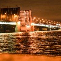 Нева. Мост. :: Yelena LUCHitskaya