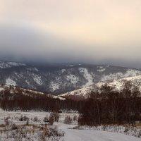 Вечер в лесу :: Евгения Кузнецова