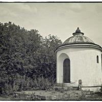 заброшенная часовня :: Дмитрий Анцыферов