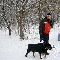 встреча в лесу :: натальябонд бондаренко