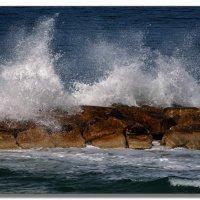 Ноябрьское море. :: Leonid Korenfeld