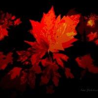 Осени узор багряных листьев :: Nina Yudicheva