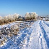 Оснежилась притихшая дорога... :: Лесо-Вед (Баранов)