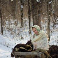 на санях :: Tatyana Belova