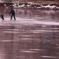 Гладок первый лед :: Татьяна Ломтева