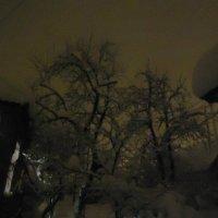 Эх зима :: Сергей