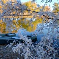 зима и осень повстречались :: Алена Рыжова