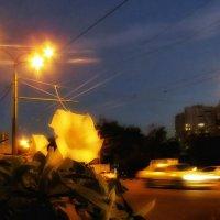 Вечер. Мелодия ранней осени. :: Ирина Сивовол