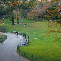 Утро в Центральном парке города Нью Йорк, США удалить редактировать :: Виталий Бараковский