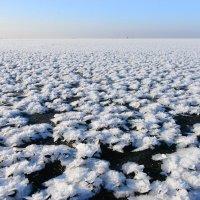 Море ледяных цветов :: Александр Шведов