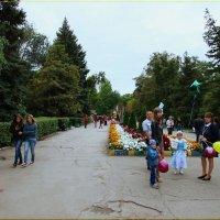 Центральная аллея городского парка. :: Anatol Livtsov