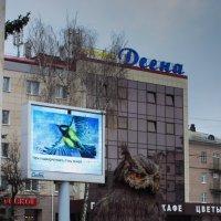 Приглашаю на лекцию... :: Елена Миронова