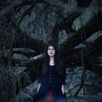 Королевна в заколдованном лесу :: Анна Рыжковская (Егорова)
