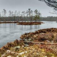 Замерзшее озеро. :: Dmitry D