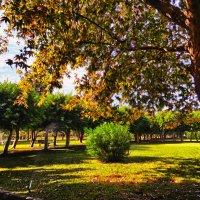 осень в  Средиземье :: Натали Акшинцева