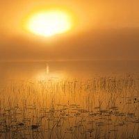 Утро на Рукоярви :: Надежда Келембет