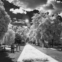 Иной мир :: Alexander Varykhanov