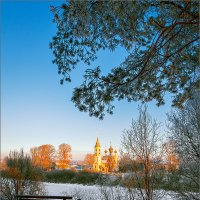 В зимнем парке... :: Александр Никитинский