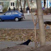 Параллельные миры :: Нина Корешкова