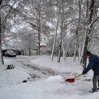 Перый снег :: Alexey Litvin