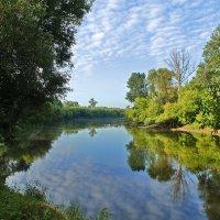 На берегу реки Мухавец :: Татьяна Шестакович