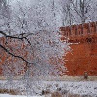 Ледяной дождь на ветвях :: Милешкин Владимир Алексеевич