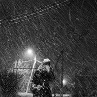 Сквозь снег :: Денис Филатов