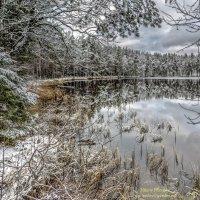 «Уснуло озеро, безмолвен лес...»* :: Valeriy Piterskiy