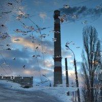 В город пришла Осень..... :: Svetlana Kravchenko
