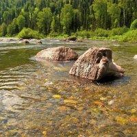 А по камушкам речка бежит... :: Сергей Чиняев