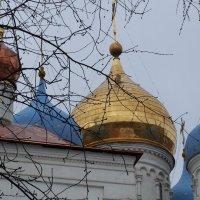 Купола Новоспасского монастыря.. :: Лара ***