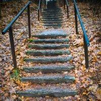 Старая лестница :: Виталий