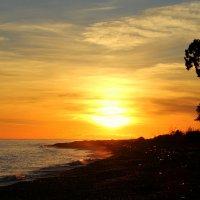 закат на черном море :: Tasha
