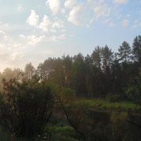 Забелелся туман над спящей рекой... :: Людмила Ларина